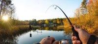 К чему снится ловить рыбу во сне: на удочку, сетью, руками?