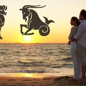 Совместимость в любовных отношениях дружбе браке Овен и Козерог