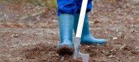 К чему может сниться копать землю лопатой, экскаватором или руками