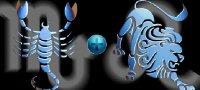 Скорпион и Лев: совместимость знаков в дружбе, любви и работе