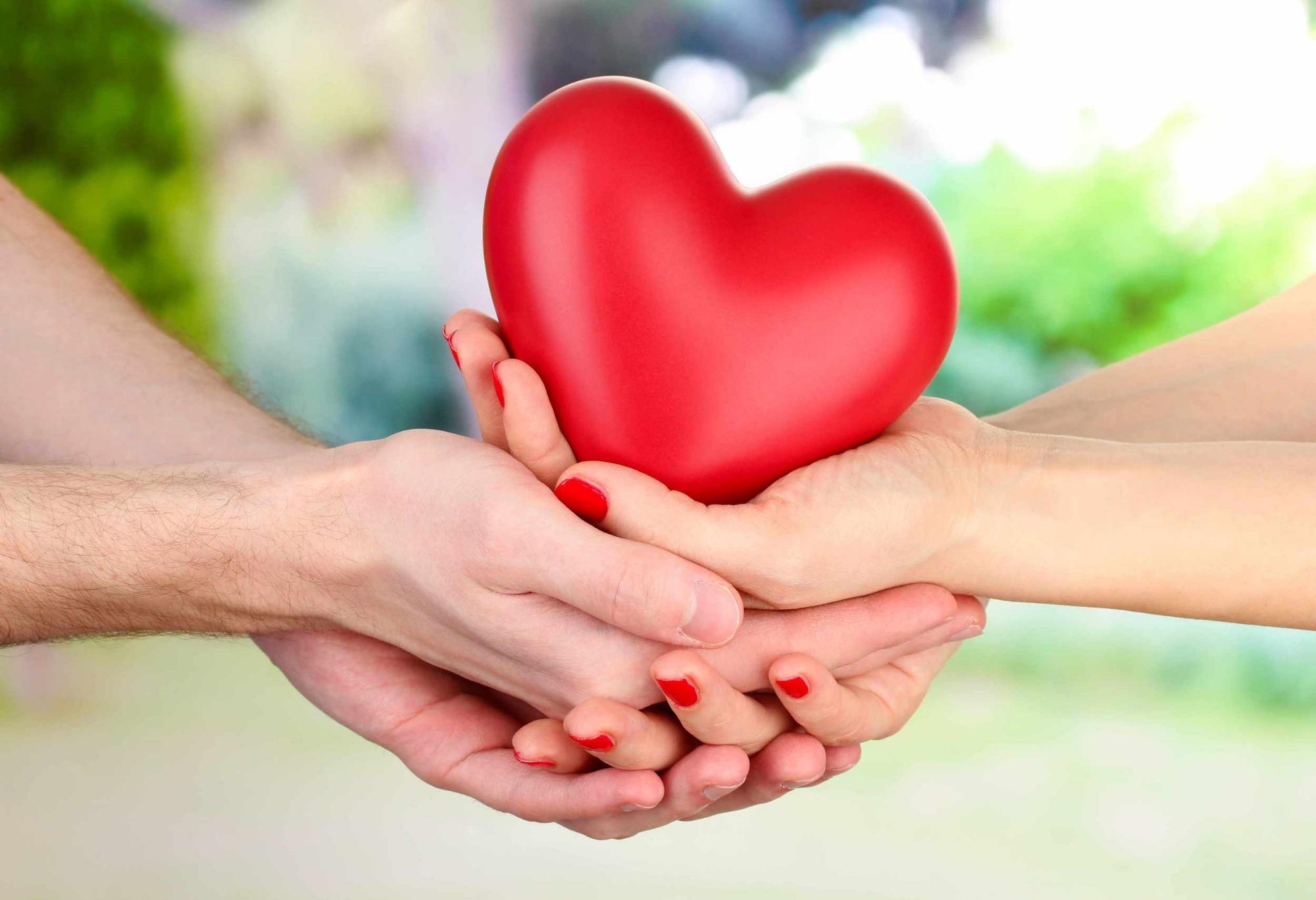 Овен и Телец совместимость знаков зодиака в любовных отношениях семейной жизни дружбе