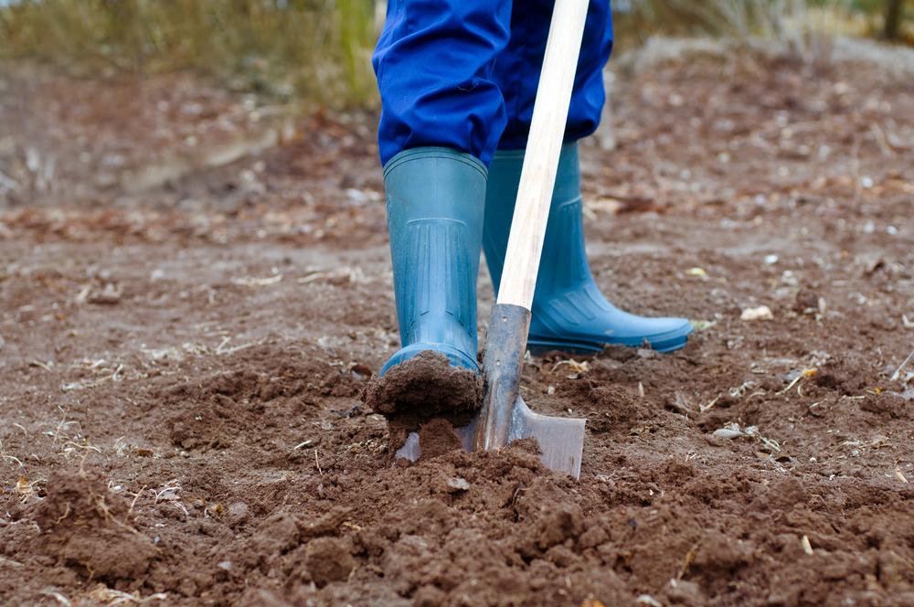 К чему снится копать землю: толкования рыть или ковыряться в грунте по сонникам разных эзотериков