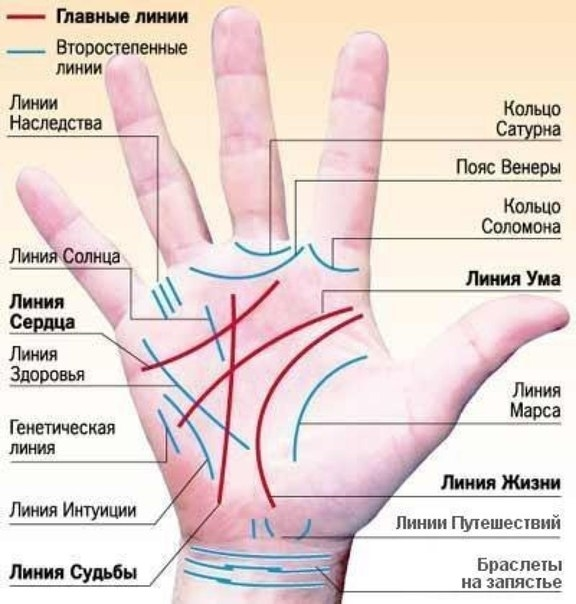 What does a mole mean on the right or left hand: on the ring finger, little finger, outside of the palm