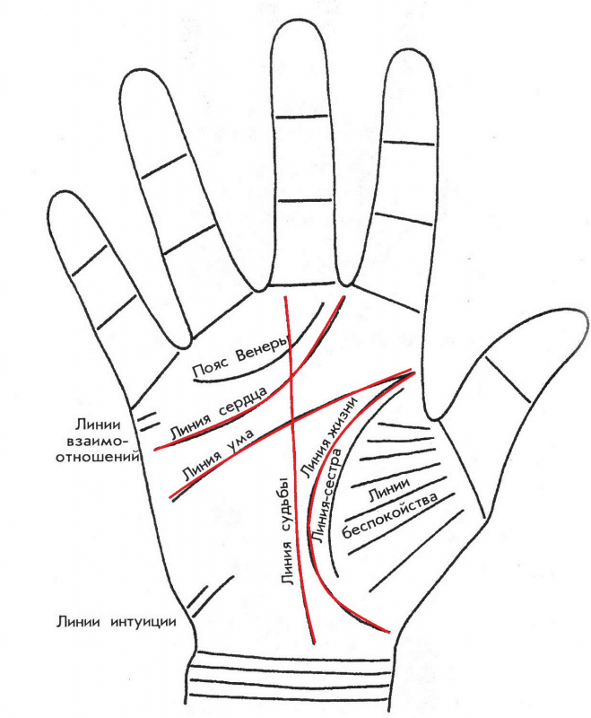 The line of wealth, the triangle of money in the palm of palmistry: description, decoding